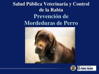 Salud P blica Veterinaria y Control de la Rabia Prevenci n de  Mordeduras de Perro