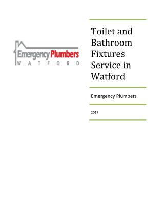 Toilet and bathroom fixtures service