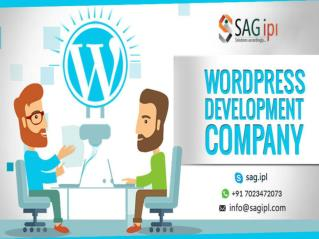 Best Wordpress Development Company in India - SAG IPL