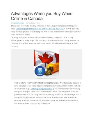 Advantages When you Buy Weed Online in Canada