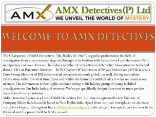 Professional Private Detective Agency in Delhi, India | AMX Detectives