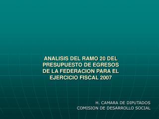 ANALISIS DEL RAMO 20 DEL  PRESUPUESTO DE EGRESOS  DE LA FEDERACION PARA EL  EJERCICIO FISCAL 2007