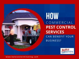 Importance of Commercial Pest Control in Jupiter FL