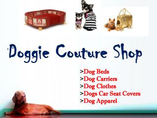 Small Dog Clothes | Doggie Couture Shop