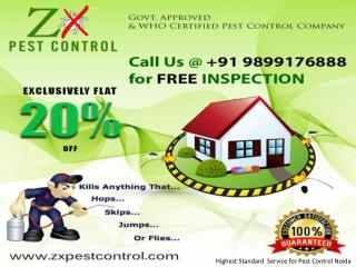 Highest Standard Pest Control Noida Call 9899176888