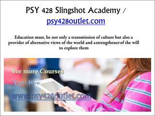 PSY 428 Slingshot Academy / psy428outlet.com