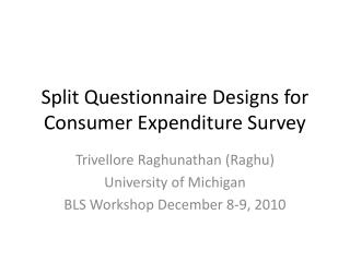Split Questionnaire Designs for Consumer Expenditure Survey