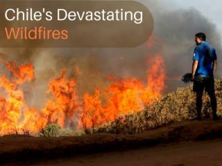 Chile's devastating wildfires
