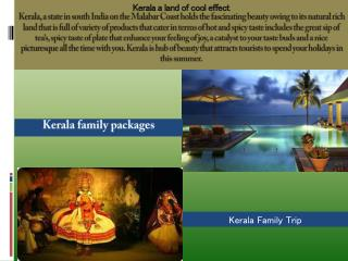Holiday in Kerala from Delhi, India