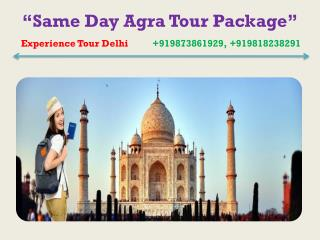 Same day Agra tour package, Delhi to Agra Taj Mahal Trip