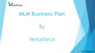 MLM Software Business