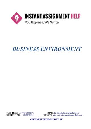 Business Environment Sample - Instant Assignment Help
