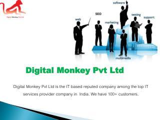 SEO Services Company Delhi NCR