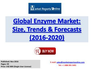 Enzyme Market Global Trends, Size, Growth Drivers and Competitive Landscape Analysis 2016-2020