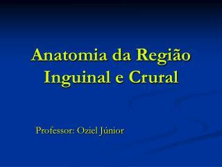 Anatomia da Regi o Inguinal e Crural