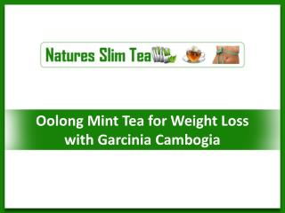 Oolong Mint Tea for Weight Loss with Garcinia Cambogia