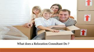What does a Relocation Consultant Do ?