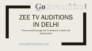 3.Prove yourself through Zee TV Auditions In Delhi with Goforaudition