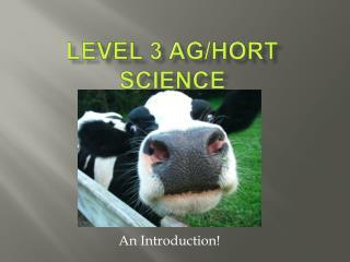 Level 3 Ag
