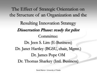 The Effect of Strategic Orientation on the Structure of an Organization and the Resulting Innovation Strategy