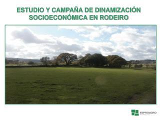 ESTUDIO Y CAMPA A DE DINAMIZACI N SOCIOECON MICA EN RODEIRO