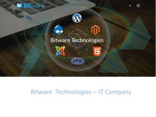 Bitware Technologies | A Fast Growing IT Company