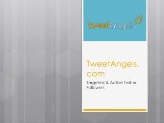 Targeted Twitter Followers - TweetAngels