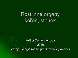 Rostlinn  org ny koren, stonek
