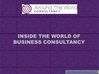 INSIDE THE WORLD OF BUSINESS CONSULTANCY