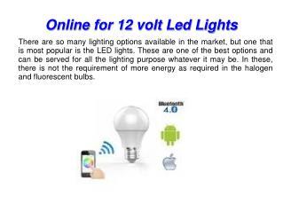 Place your order online for 12 volt Led lights