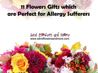 11 Flowers Gifts which are perfect for Allergy Sufferers
