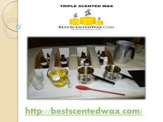 Ceder Fragrance Triple Scented Wax Melts