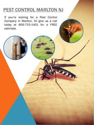 Pest Control NJ