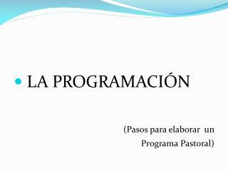 LA PROGRAMACI N   Pasos para elaborar  un  Programa Pastoral