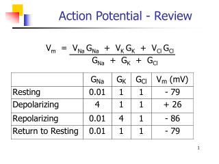 Action Potential - Review