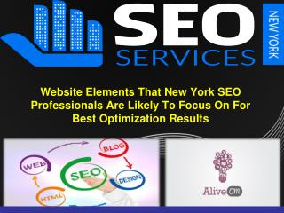Site Components That New York SEO Professionals Are Probably going To Concentrate On For Best Optimization Results