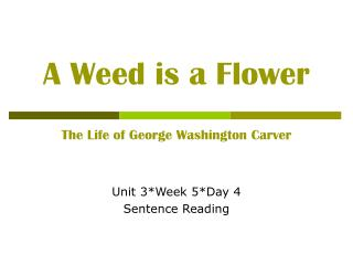 A Weed is a Flower  The Life of George Washington Carver