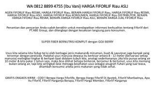 WA 0812 8899 4755 (Ibu Vani) HARGA FIFORLIF Riau ASLI