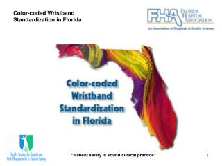 Color-coded Wristband Standardization in Florida