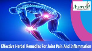 Effective Herbal Remedies For Joint Pain And Inflammation