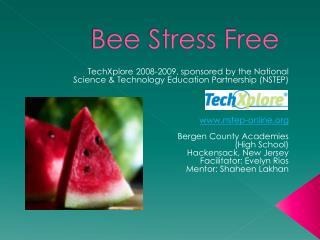 Bee Stress Free