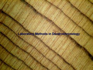 Laboratory Methods in Dendrochronology