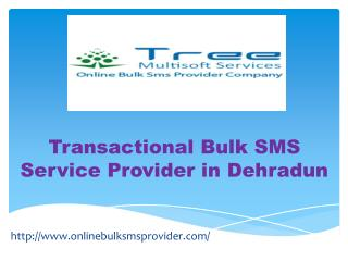 Transactional SMS in dehradun