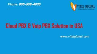 Vitelglobal communications LLC..,in USA