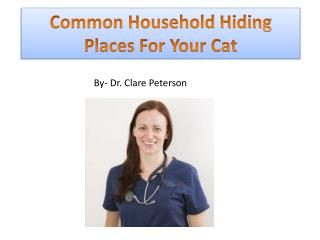 Common Household Hiding Places For Your Cat- Dr. Clare Peterson