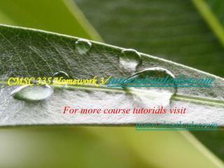 CMSC 335 Homework 3/tutorialoutletdotcom