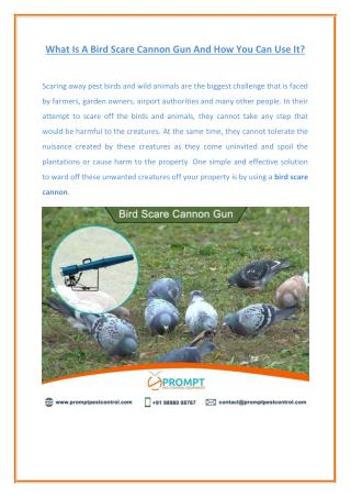 Bird Scare Cannon - Complete Solution to Get Rid Off Birds