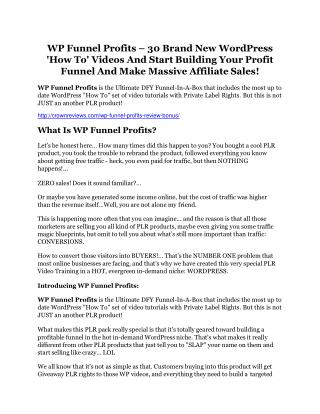 WP Funnel Profits review - WP Funnel Profits sneak peek features