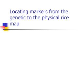 Locating markers from the genetic to the physical rice map