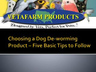 Choosing a Dog De-worming Product – Five Basic Tips to Follow